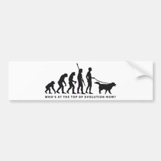 evolution dog car bumper sticker