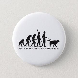 evolution dog pinback button