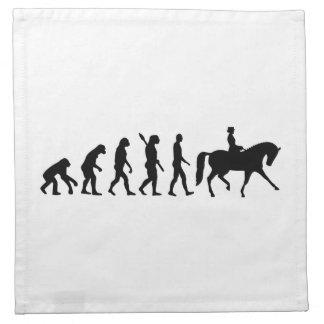 Evolution dressage cloth napkin