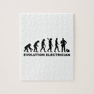 Evolution Electrician Puzzle