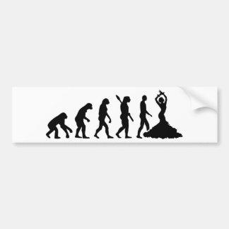 Evolution Flamenco Bumper Sticker