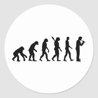 Evolution Flute Stickers