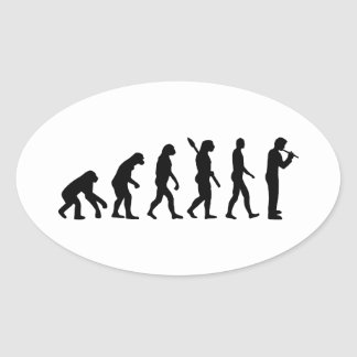 Evolution Flute Oval Sticker