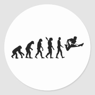 Evolution Guitar Sticker