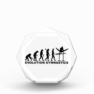 Evolution Gymnastics Acrylic Award