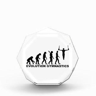 Evolution Gymnastics rings Award