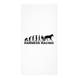 Evolution harness racing card