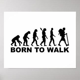 Evolution Hiking born to walk Poster