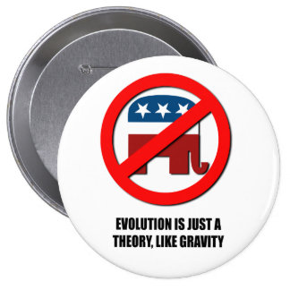 Evolution is just a theory like gravity pinback button