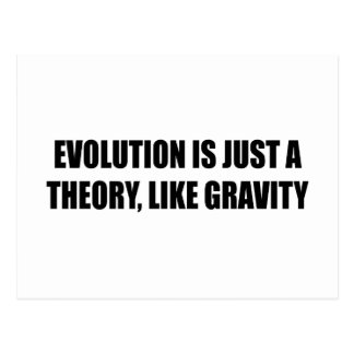 Evolution is just a theory like gravity postcard