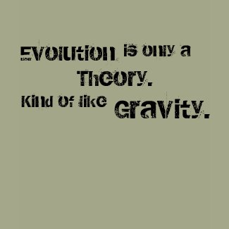 Evolution is only a Theory. Kind of like gravity. shirt