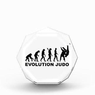 Evolution Judo Award