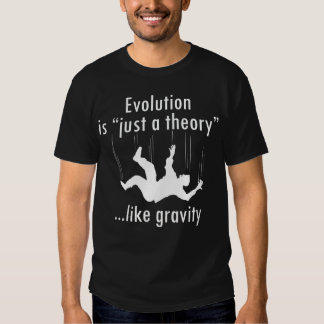 Evolution Just a Theory T Shirt