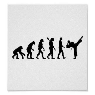 Evolution Karate kickboxing Print