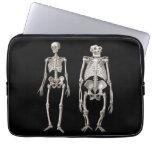 Evolution Man and Ape Skeletons Laptop Computer Sleeve