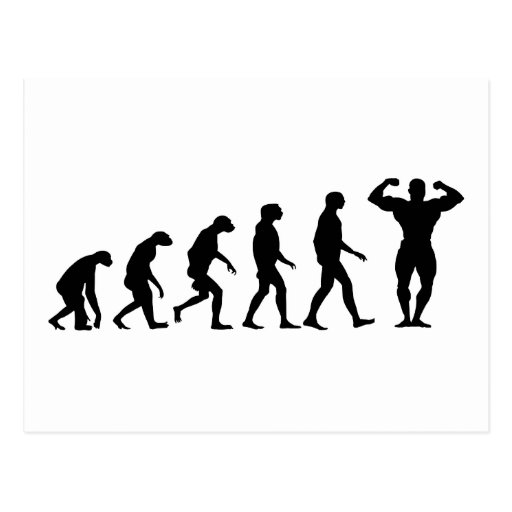 Evolution of Bodybuilding Postcard