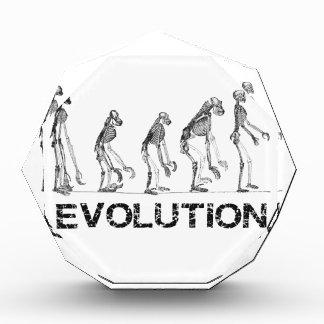 evolution of hymen award