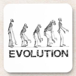 evolution of hymen coaster