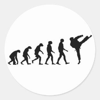 Evolution of Karate Classic Round Sticker