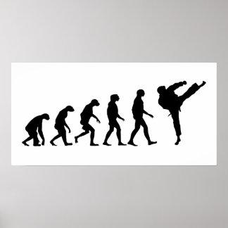 Evolution of Karate Poster