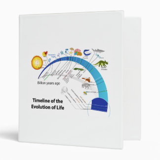 Evolution of Life on Earth Timeline Diagram 3 Ring Binder