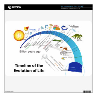 Evolution of Life on Earth Timeline Diagram Decal For The MacBook Air