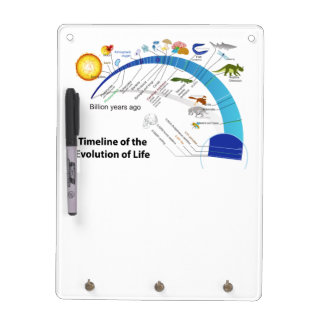 Evolution of Life on Earth Timeline Diagram Dry-Erase Board