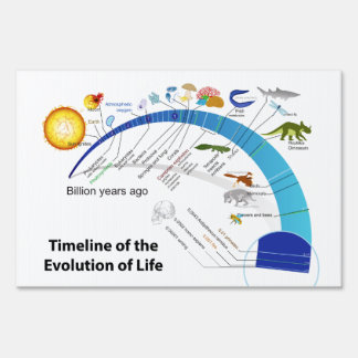 Evolution of Life on Earth Timeline Diagram Sign