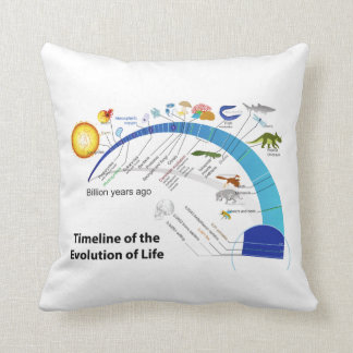 Evolution of Life on Earth Timeline Diagram Throw Pillow
