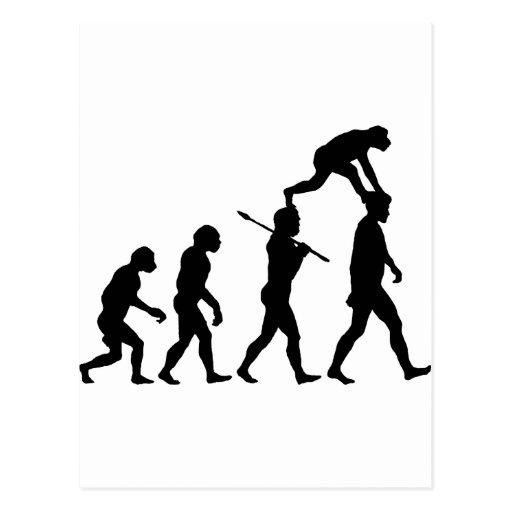 Evolution of Man Post Card