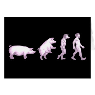Evolution of pigs greeting card