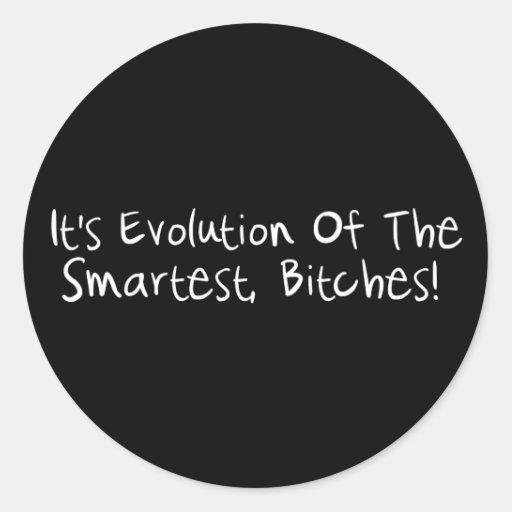 Evolution Of The Smartest Round Sticker