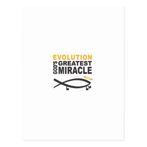 Evolution Post Cards