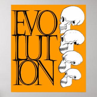 Evolution Print