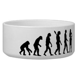 Evolution secretary dog water bowl