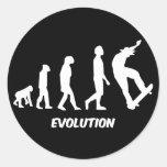 Evolution Skateboarding Stickers