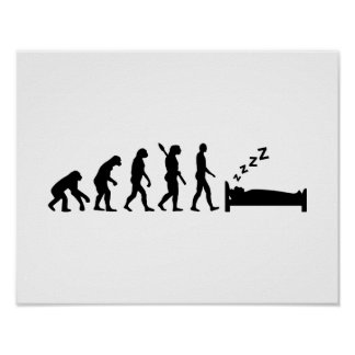 Evolution sleeping poster