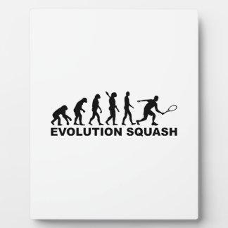 Evolution Squash Display Plaques