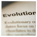 Evolution text on page ceramic tiles