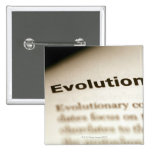 Evolution text on page pinback button