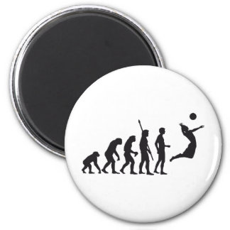 evolution volleyball magnet