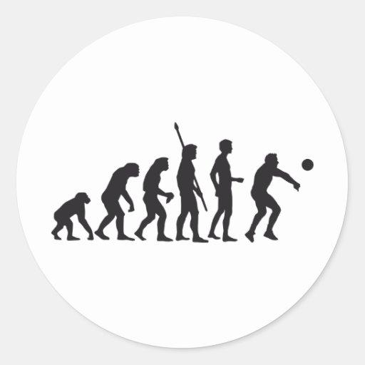 evolution volleyball pegatina redonda