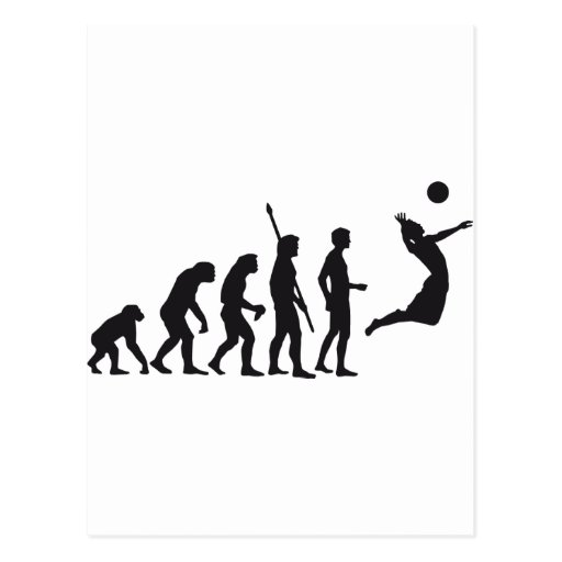 evolution volleyball postcards
