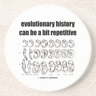 evolutionary history can be a bit repetitive drink coaster