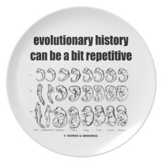 evolutionary history can be a bit repetitive melamine plate