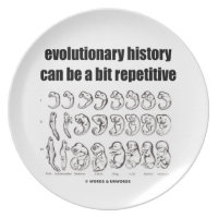 evolutionary history can be a bit repetitive party plates