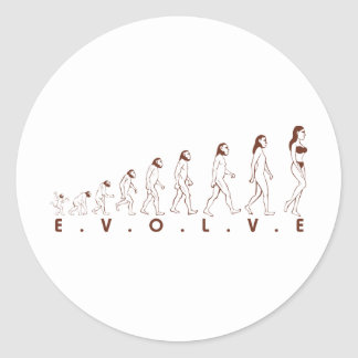 evolve classic round sticker