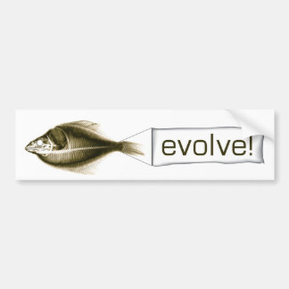 evolve! evlove! bumper sticker
