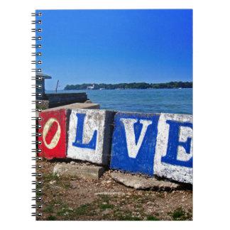 Evolve Notebook