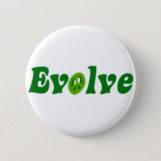 Evolve Pinback Button